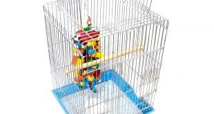 قفس پرنده