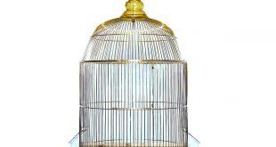 قفس پرندگان